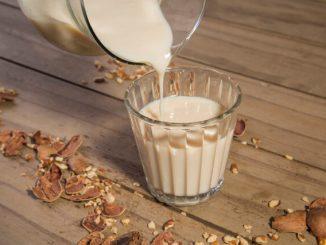 leite de noz pecãn